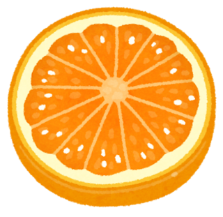 fruit_slice10_orange.png